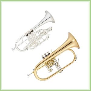 Cornet / Flugel Horn